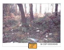 Flight 93 Debris 3